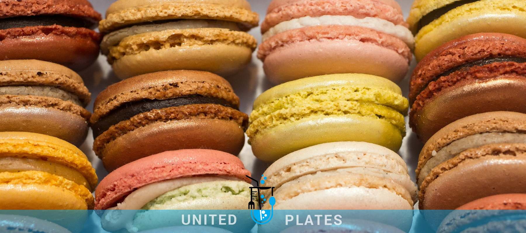 United Plates Chocolate - Sugar Confectionery - Flour Confectionery food consultant dublin